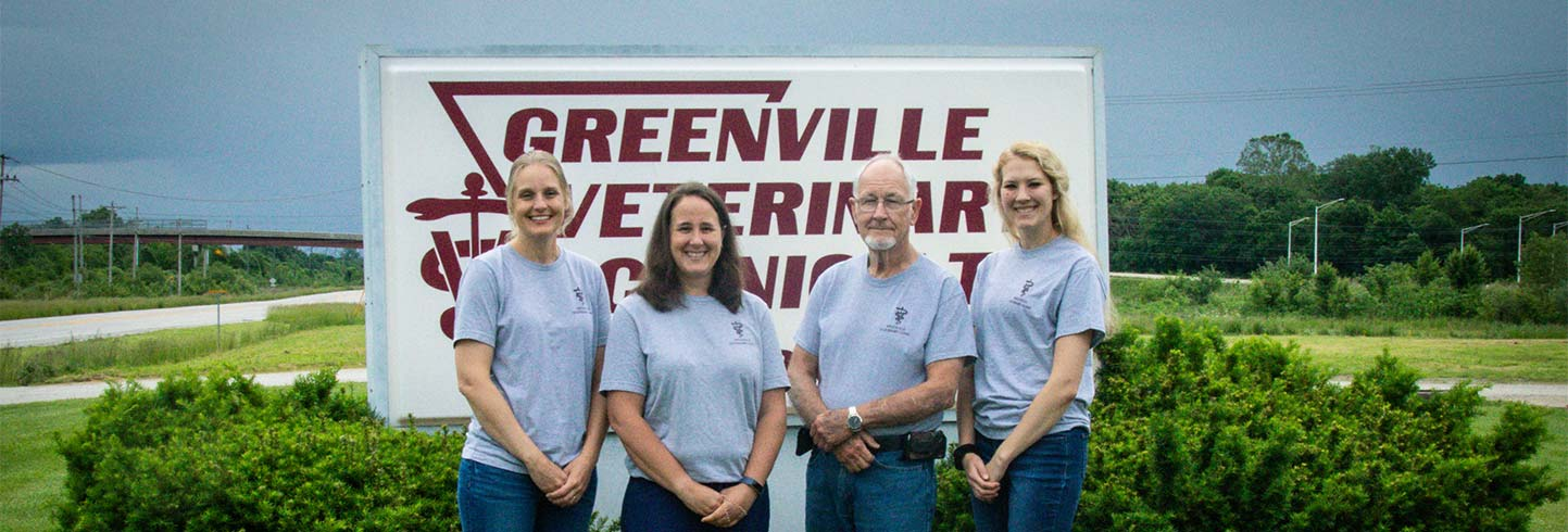Greenville veterinarians